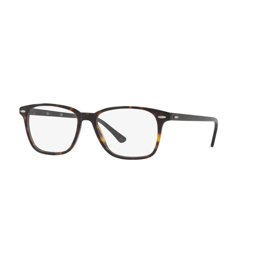 595bd04881b8 Ray-Ban Eyewear - David Clulow